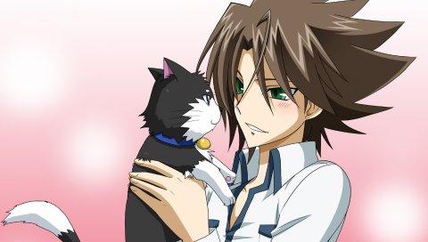 Девушка, молодая, кошка, брюнетка, обниматься