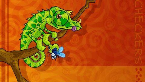 Хамелеон, рептилия, зеленый, ветка, сидеть
