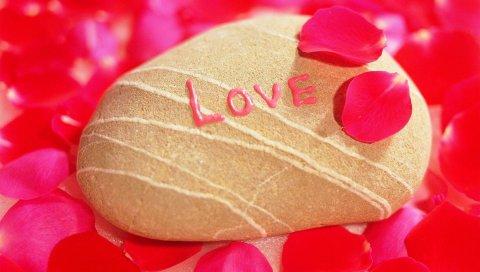Любовь, камень, ракушка, лепесток, фотография