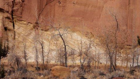 Каньон, стена, скалы, деревья, песок, осень