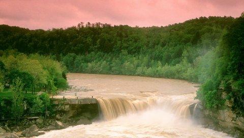 Камберленд падает, Кентукки, вода, лес, деревья