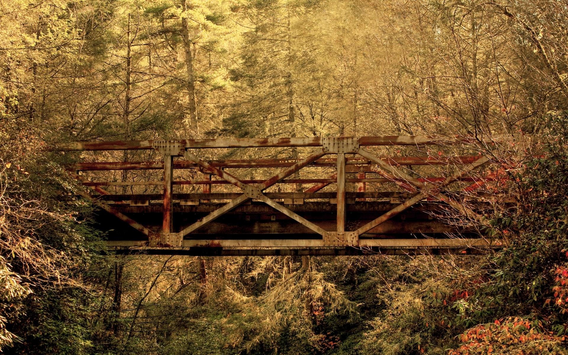 Картинки Мост, дерево, деревья, перекладины фото и обои на рабочий стол