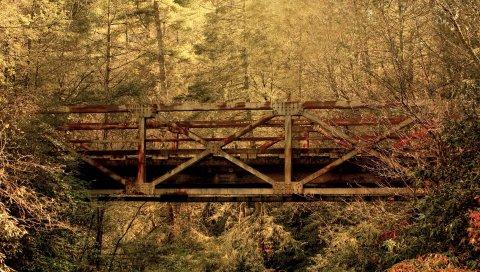 Мост, дерево, деревья, перекладины