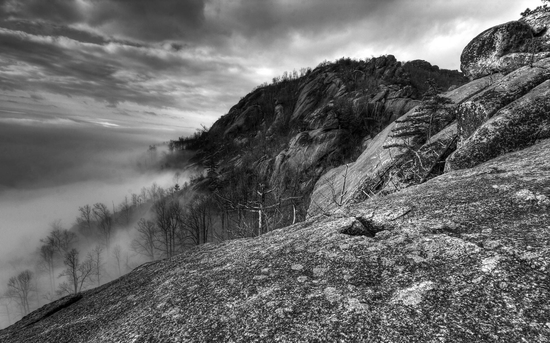 Картинки Горы, скалы, деревья, туман, черно-белые фото и обои на рабочий стол