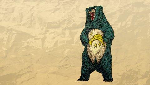 Медведь, бумага, смятый, больной