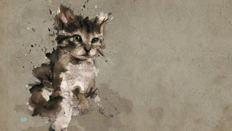 Кошка, котенок, серый, рисунок