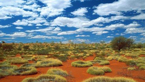 Растительность, песок, облака, небо, австралия
