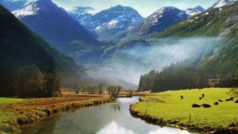 Долина ангелов, горы, луг, река, животные, трава, зелень