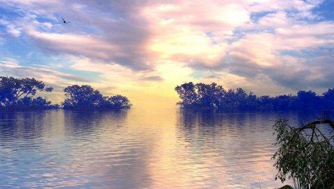 Озеро, деревья, небо, облака, птица, полет