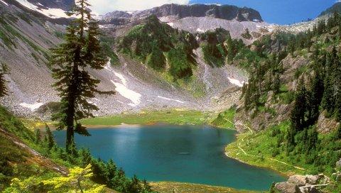 Озеро, горы, альпы, деревья