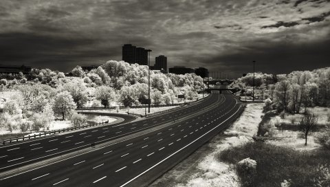 Дорога, маркировка, линии, город, черно-белый
