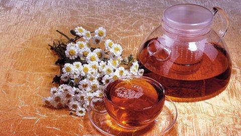 Чай, напиток, чашка, графин, ромашка, цветы
