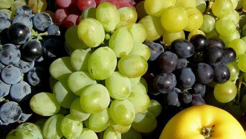 Виноград, фрукты, ассорти, цвета, яблоко