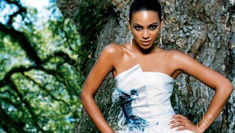 Beyonce, платье, плечи, сундук, дерево