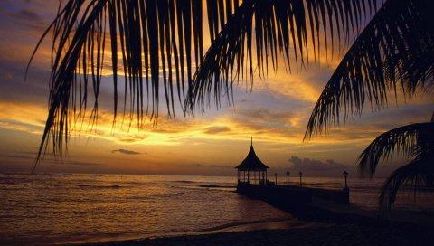 Пирс, беседка, пальма, ветки, вечер, море