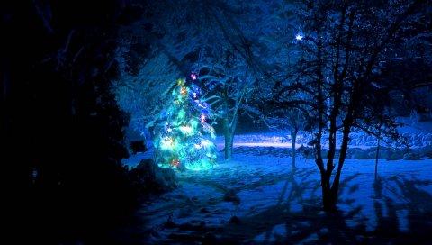 Елка, снег, дерево, новый год, рождество, гирлянды