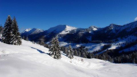 Горы, елки, небо, зима, спуск