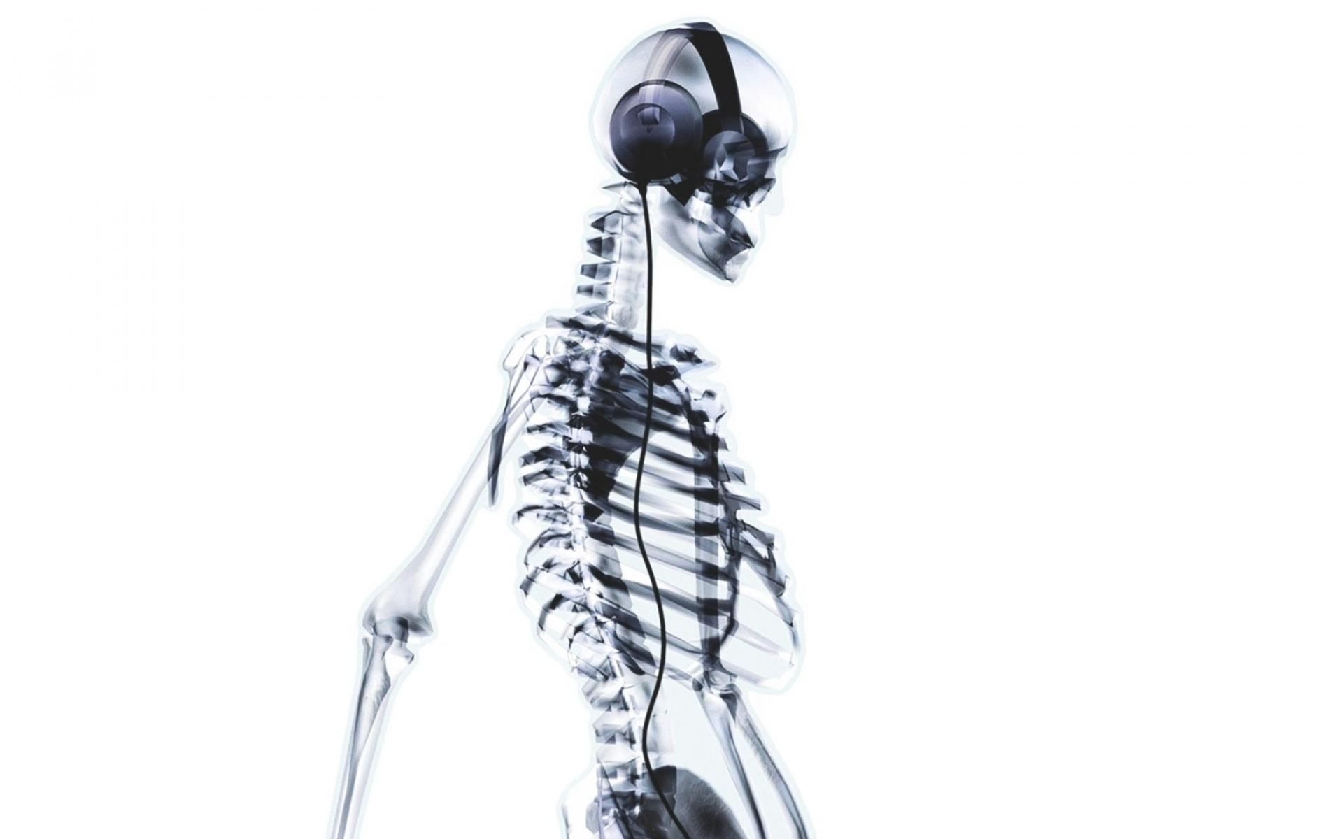 Обои на планшет скелет