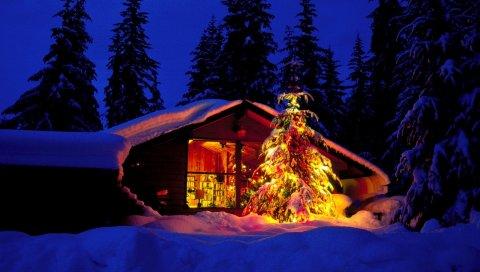 Новый год, рождество, елка, дом, окно, вид, пожары