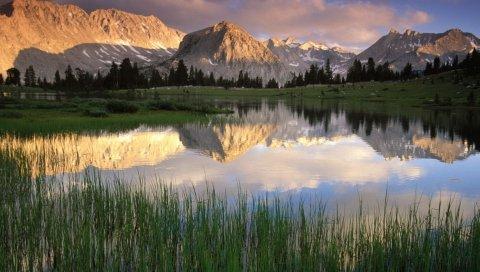 Горы, озеро, трости