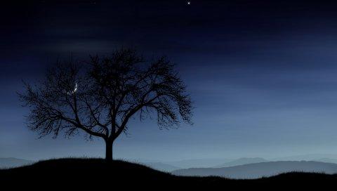 Дерево, ночь, одиночество, силуэт, звезды, луна, туман
