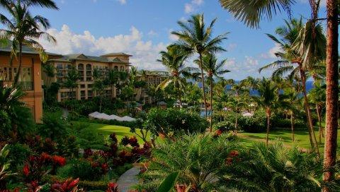 Гавайи, отель, пальмы, бассейн, море, цветы
