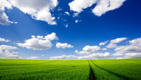 Дорога, зелень, трава, небо, облака, следы