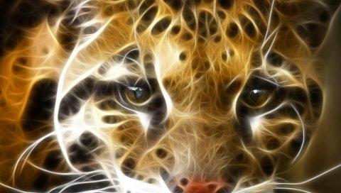 Абстракция, тигр, лицо, оранжевый, белый
