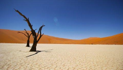 природа пустыня загрузить