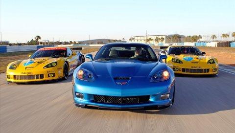 2010, Автомобили, гонки, Corvette, Sebring